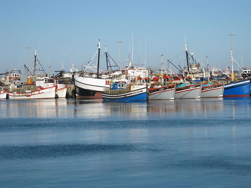 Saldanha Bay Harbour 800